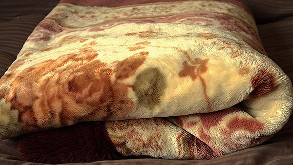 毛布のことをアフリカイ~毛布を観察~